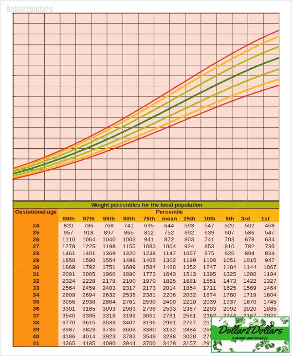 Baby Infant Growth Chart